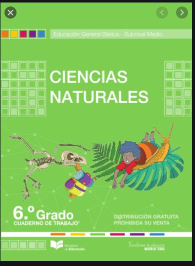 Cuaderno de Trabajo de Ciencias Naturales 6 Resuelto